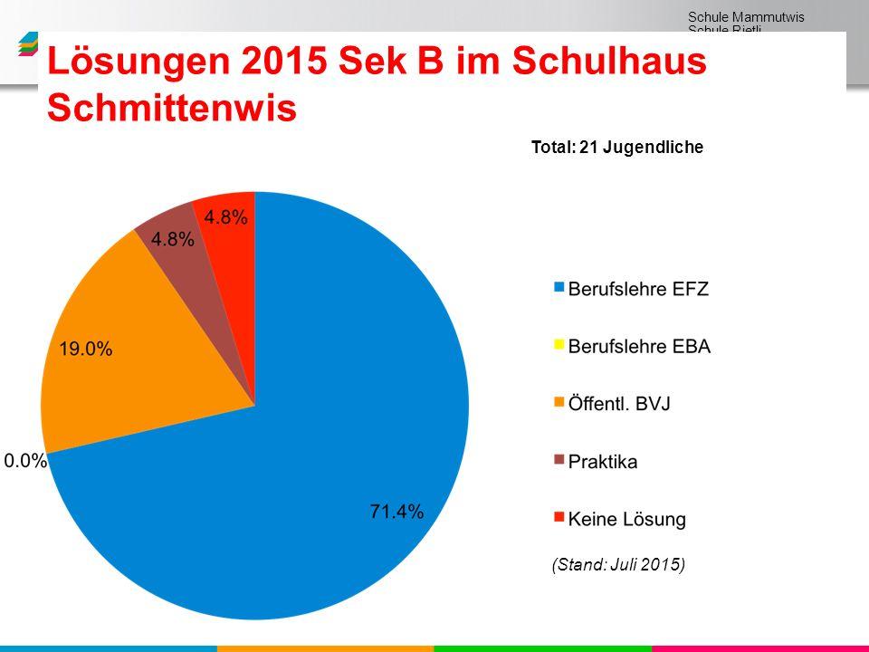Schule Mammutwis Schule Rietli Schule Schmittenwis Schule Schleinikon Lösungen 2015 Sek B im Schulhaus Schmittenwis (Stand: Juli 2015) Total: 21 Jugendliche