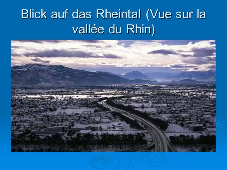 Blick auf das Rheintal (Vue sur la vallée du Rhin)