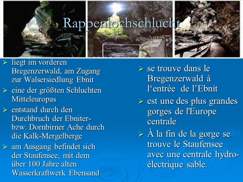 Rappenlochschlucht  liegt im vorderen Bregenzerwald, am Zugang zur Walsersiedlung Ebnit  eine der größten Schluchten Mitteleuropas  entstand durch den Durchbruch der Ebniter- bzw.