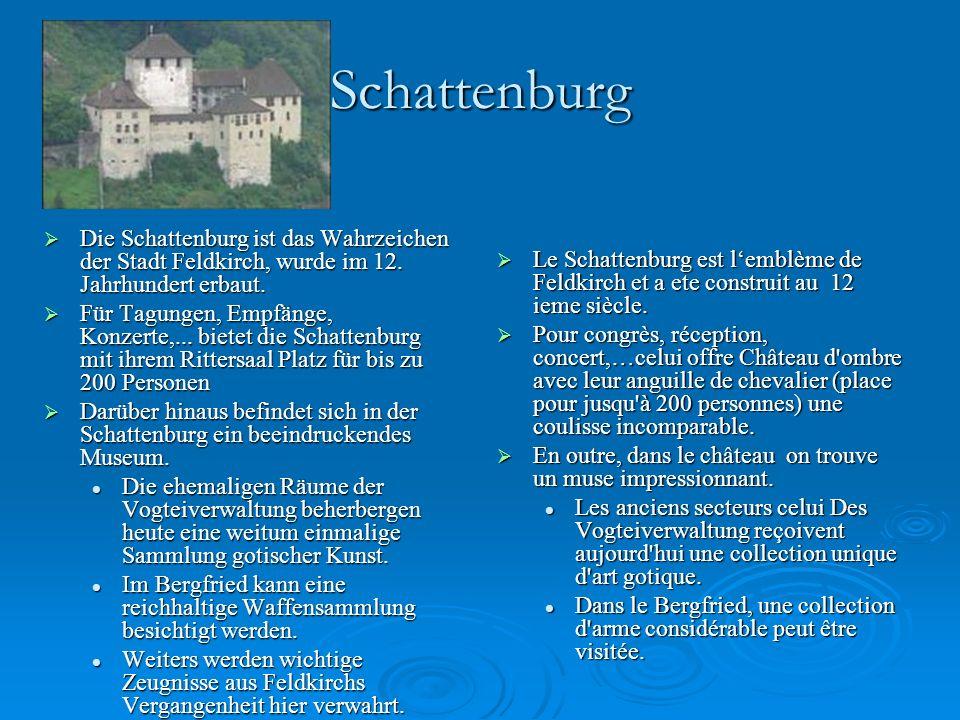 Schattenburg DDDDie Schattenburg ist das Wahrzeichen der Stadt Feldkirch, wurde im 12.