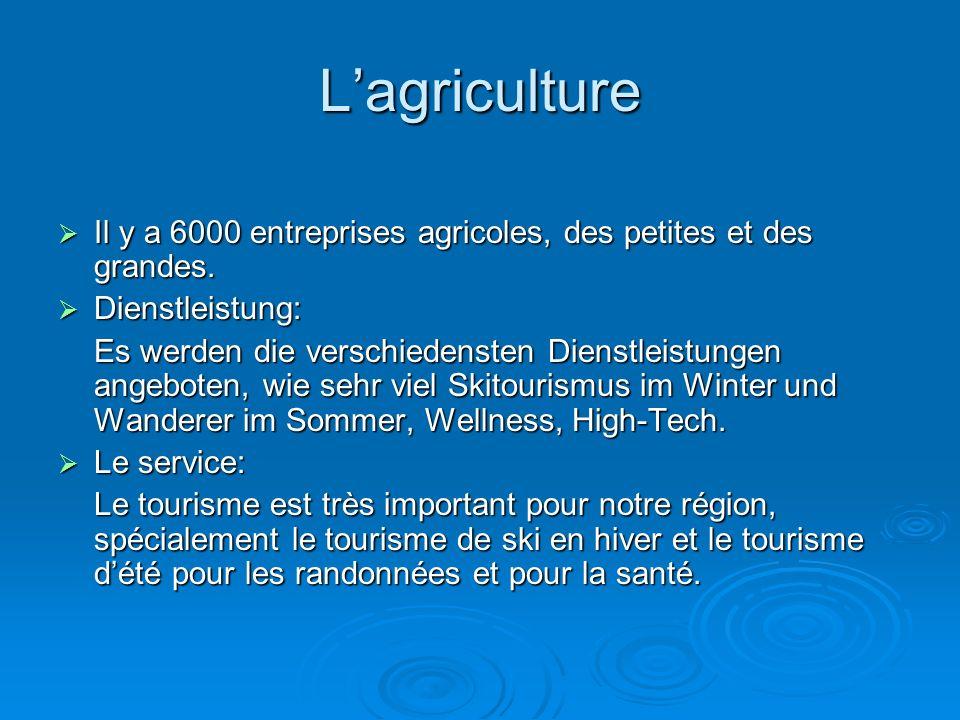 L'agriculture  Il y a 6000 entreprises agricoles, des petites et des grandes.