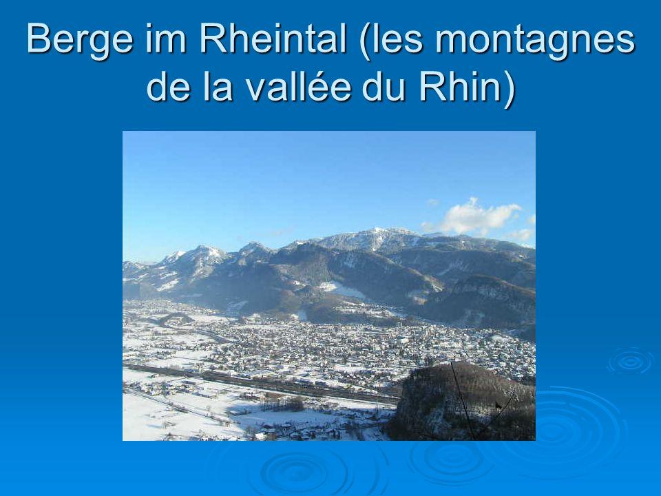 Stadt im Rheintal: Dornbirn (Une Ville de la vallée du Rhin)