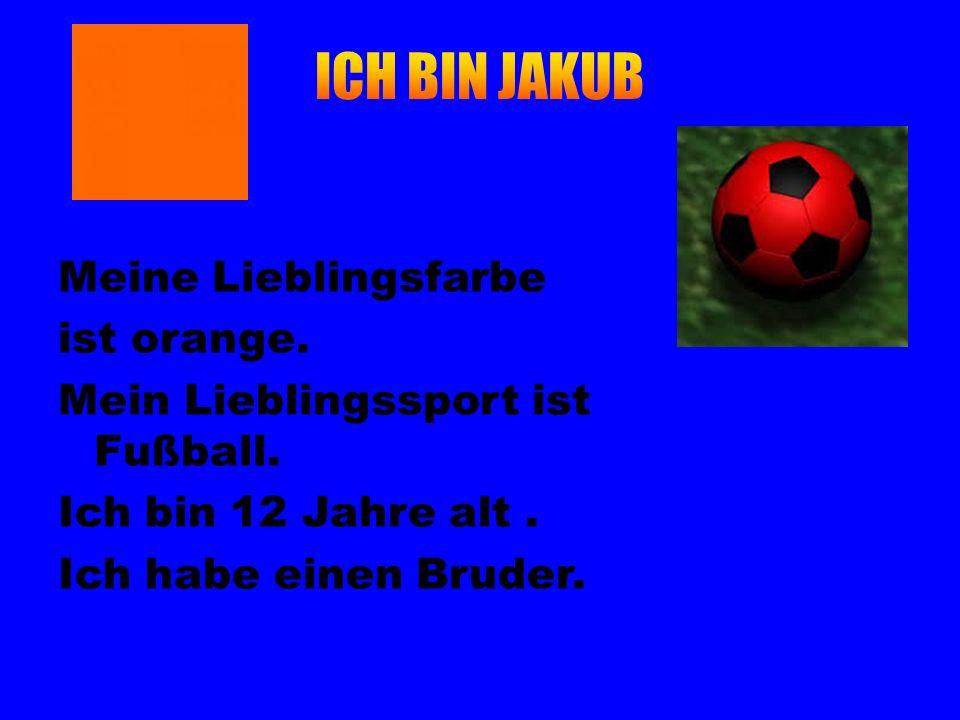 Meine Lieblingsfarbe ist orange. Mein Lieblingssport ist Fußball. Ich bin 12 Jahre alt. Ich habe einen Bruder.