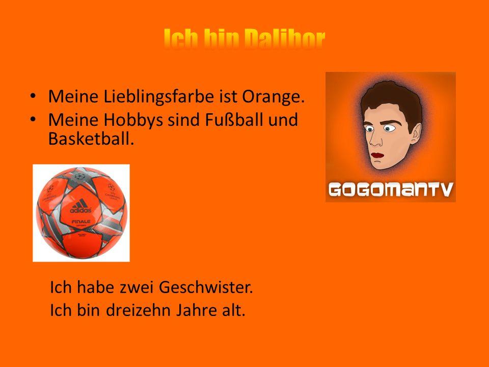 Meine Lieblingsfarbe ist Orange. Meine Hobbys sind Fußball und Basketball. Ich habe zwei Geschwister. Ich bin dreizehn Jahre alt.