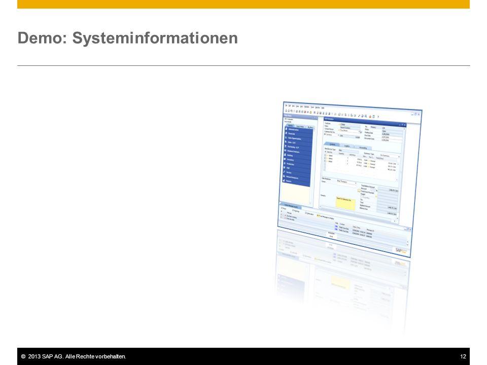 ©2013 SAP AG. Alle Rechte vorbehalten.12 Demo: Systeminformationen
