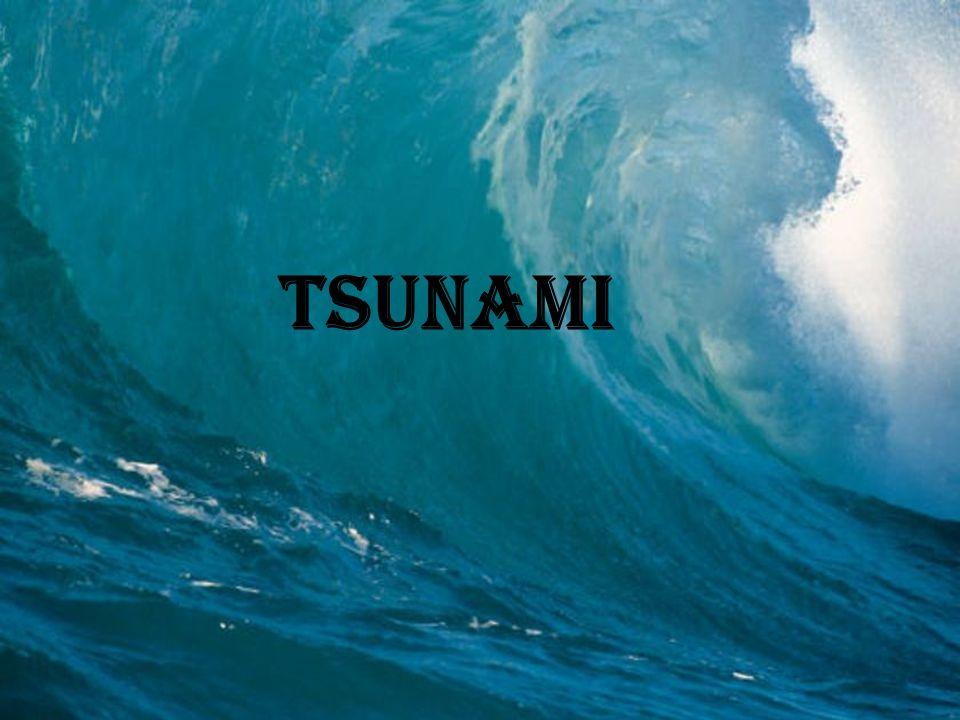Tsunami- Informationen Größter Tsunami aller Zeiten Warnungssysteme
