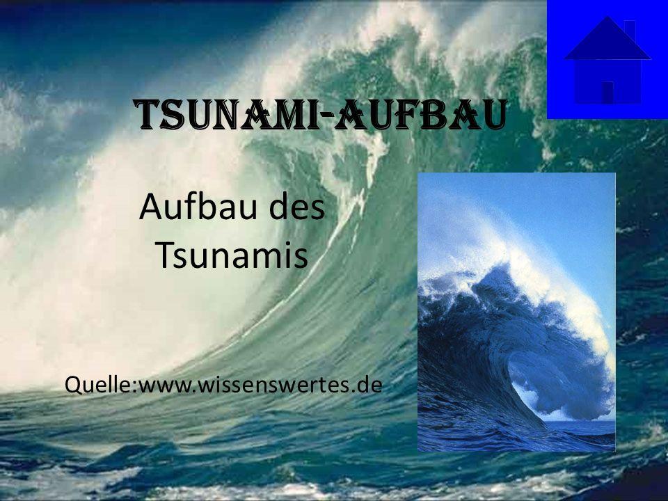 Tsunami-Aufbau Aufbau des Tsunamis Quelle:www.wissenswertes.de