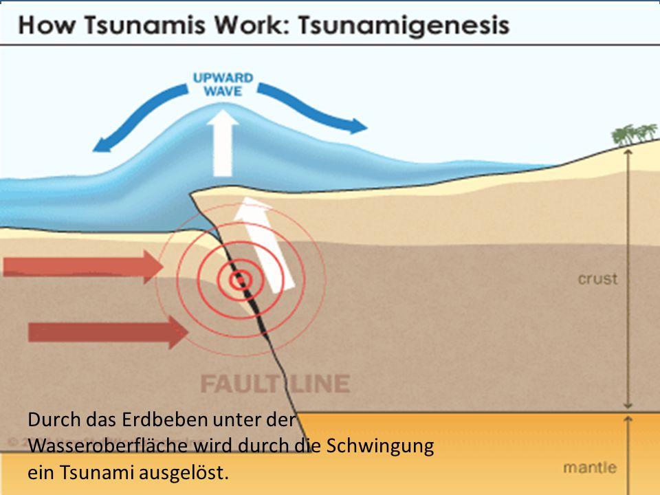 http://de.wikipedia.org/w/index.php?title=Datei:Tsunami080503_svg.sv Durch das Erdbeben unter der Wasseroberfläche wird durch die Schwingung ein Tsunami ausgelöst.