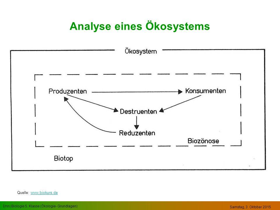 ( mn) Biologie 5. Klasse (Ökologie- Grundlagen) Samstag, 3. Oktober 2015 Analyse eines Ökosystems Quelle: www.biokurs.dewww.biokurs.de