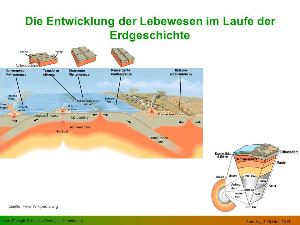 ( mn) Biologie 5. Klasse (Ökologie- Grundlagen) Samstag, 3. Oktober 2015 Die Entwicklung der Lebewesen im Laufe der Erdgeschichte Quelle: www.Wikipedi