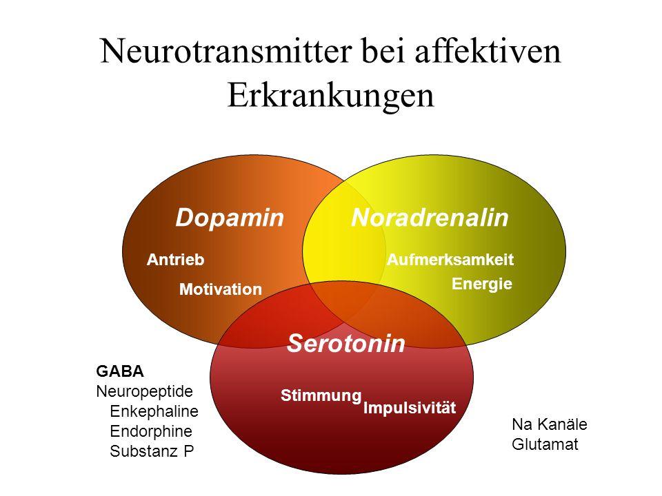 Neurotransmitter bei affektiven Erkrankungen DopaminNoradrenalin Serotonin Antrieb Motivation Aufmerksamkeit Energie Stimmung GABA Neuropeptide Enkeph