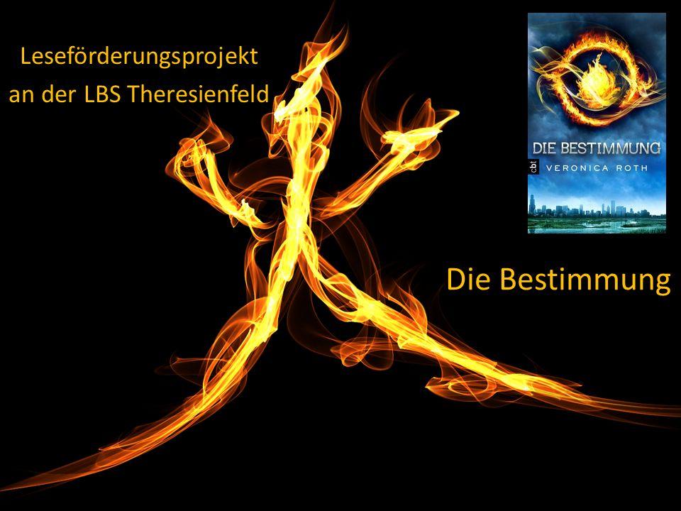 Die Bestimmung Leseförderungsprojekt an der LBS Theresienfeld