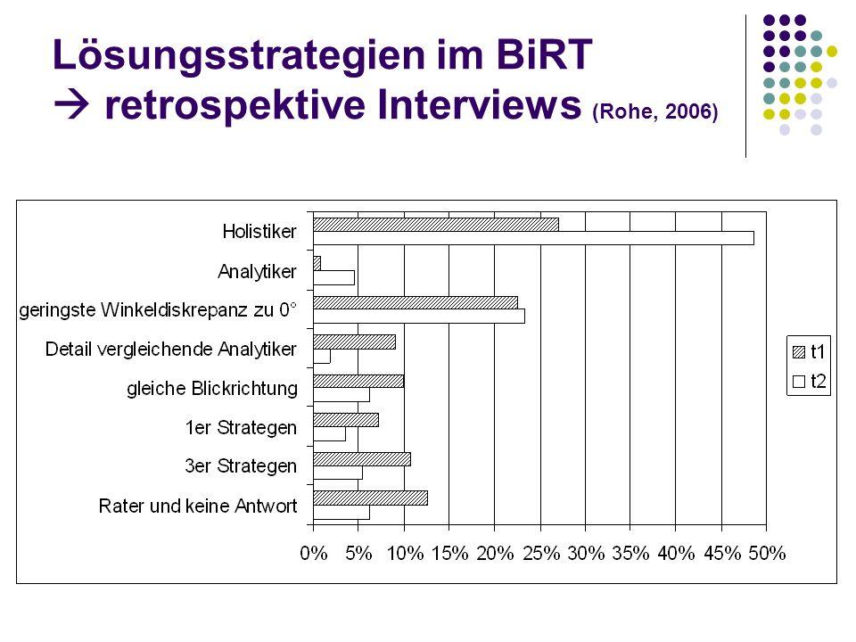 Lösungsstrategien im BiRT  retrospektive Interviews (Rohe, 2006)