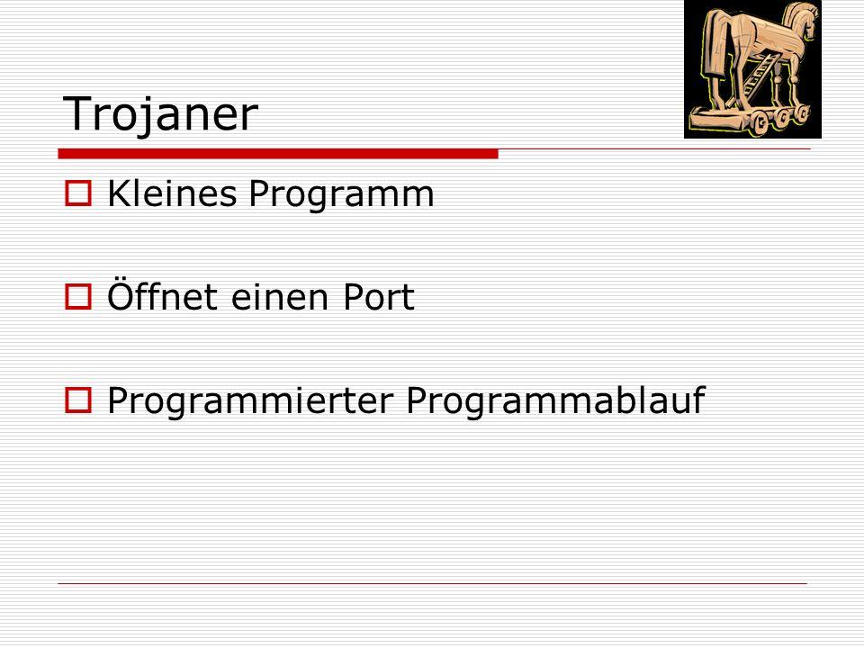 Trojaner  Kleines Programm  Öffnet einen Port  Programmierter Programmablauf