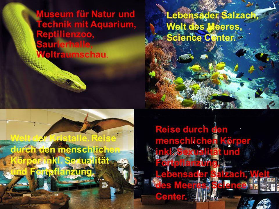 Museum für Natur und Technik mit Aquarium, Reptilienzoo, Saurierhalle, Weltraumschau.