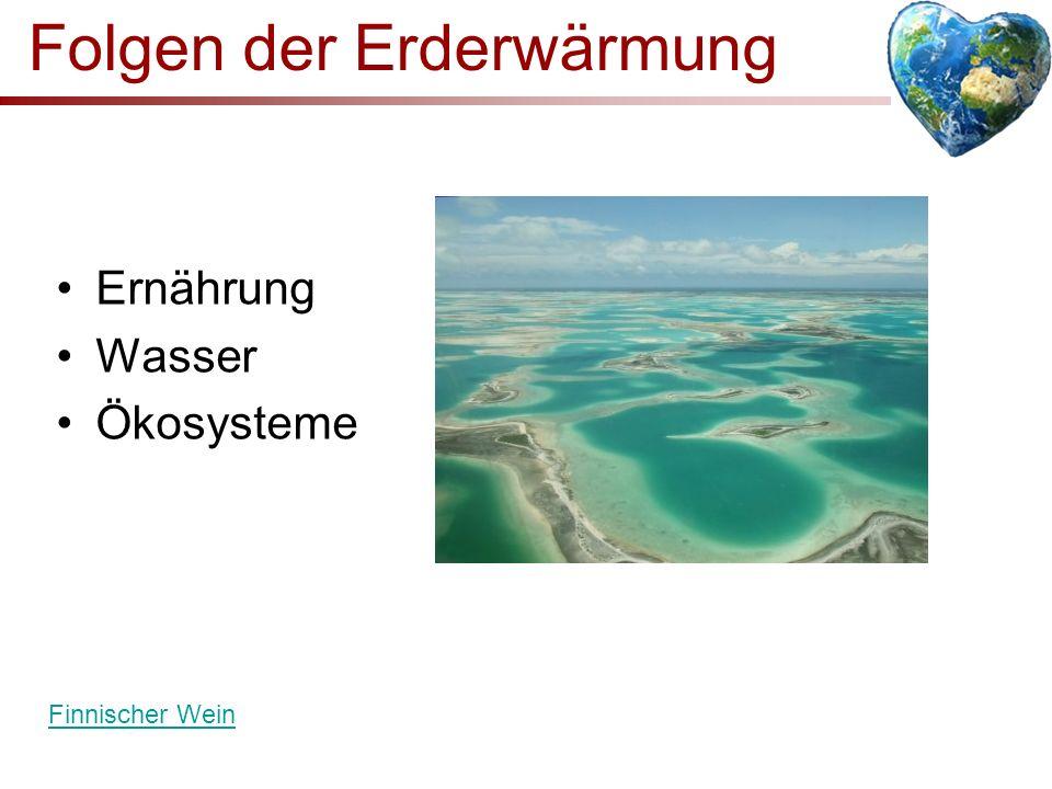 Folgen der Erderwärmung Ernährung Wasser Ökosysteme Finnischer Wein