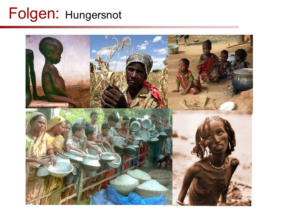 Folgen: Hungersnot