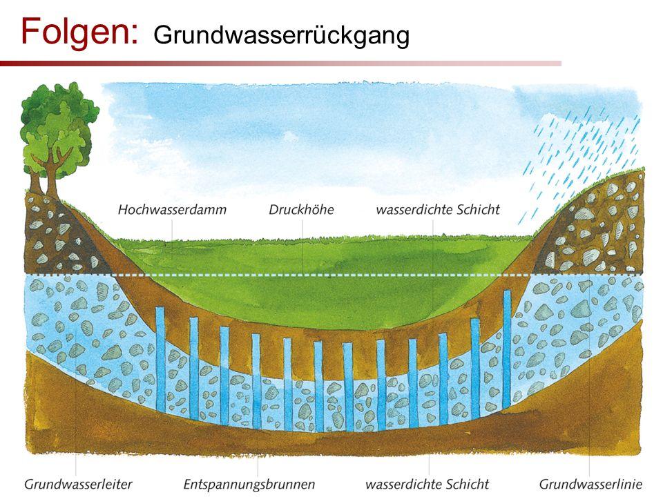 Folgen: Grundwasserrückgang