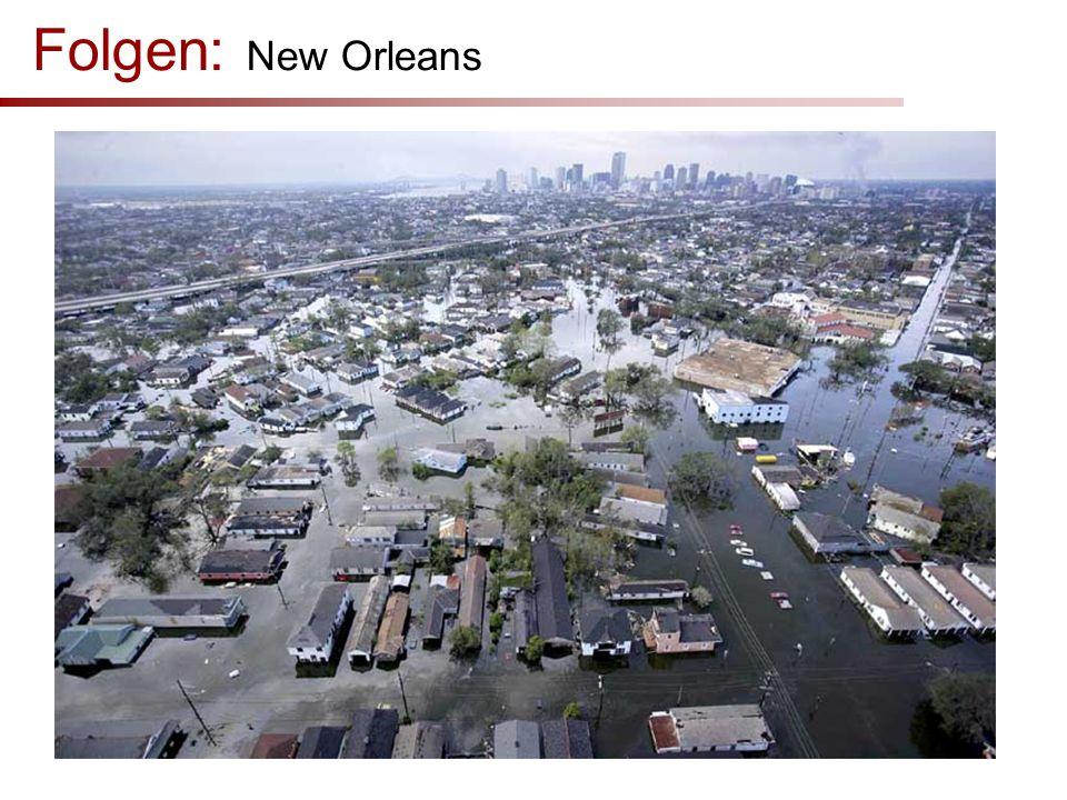 Folgen: New Orleans