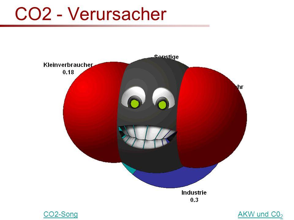 CO2 - Verursacher CO2-SongAKW und C0 2