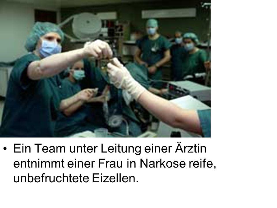 Ein Team unter Leitung einer Ärztin entnimmt einer Frau in Narkose reife, unbefruchtete Eizellen.
