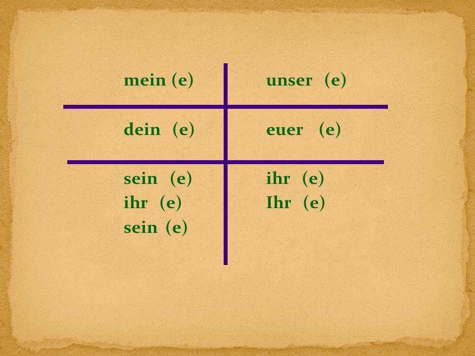 mein(e)unser (e) dein (e)euer (e) sein (e)ihr (e) ihr (e)Ihr (e) sein (e)