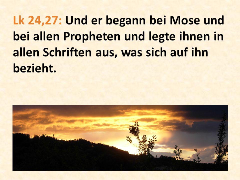 Die Präzision der Vorhersagen a.Die Abstammung des Messias b.