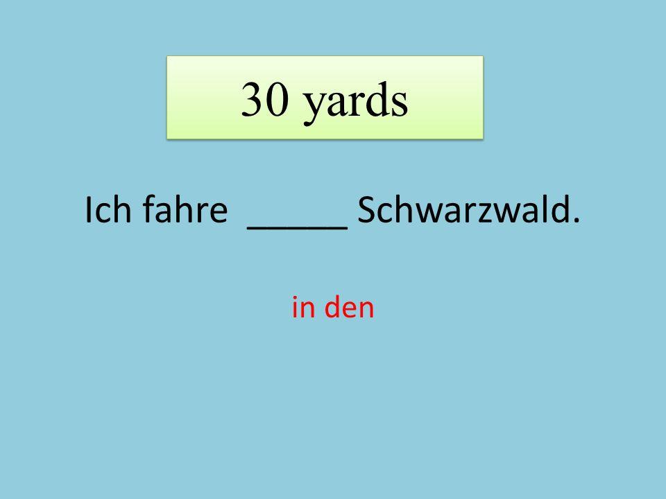Ich fahre _____ Schwarzwald. in den 30 yards