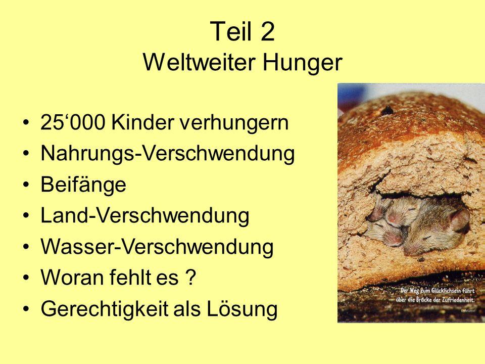 Teil 2 Weltweiter Hunger 25'000 Kinder verhungern Nahrungs-Verschwendung Beifänge Land-Verschwendung Wasser-Verschwendung Woran fehlt es ? Gerechtigke