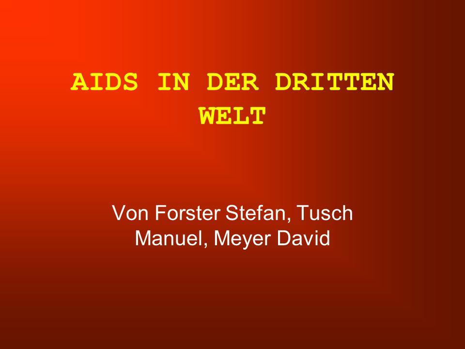 AIDS IN DER DRITTEN WELT Von Forster Stefan, Tusch Manuel, Meyer David
