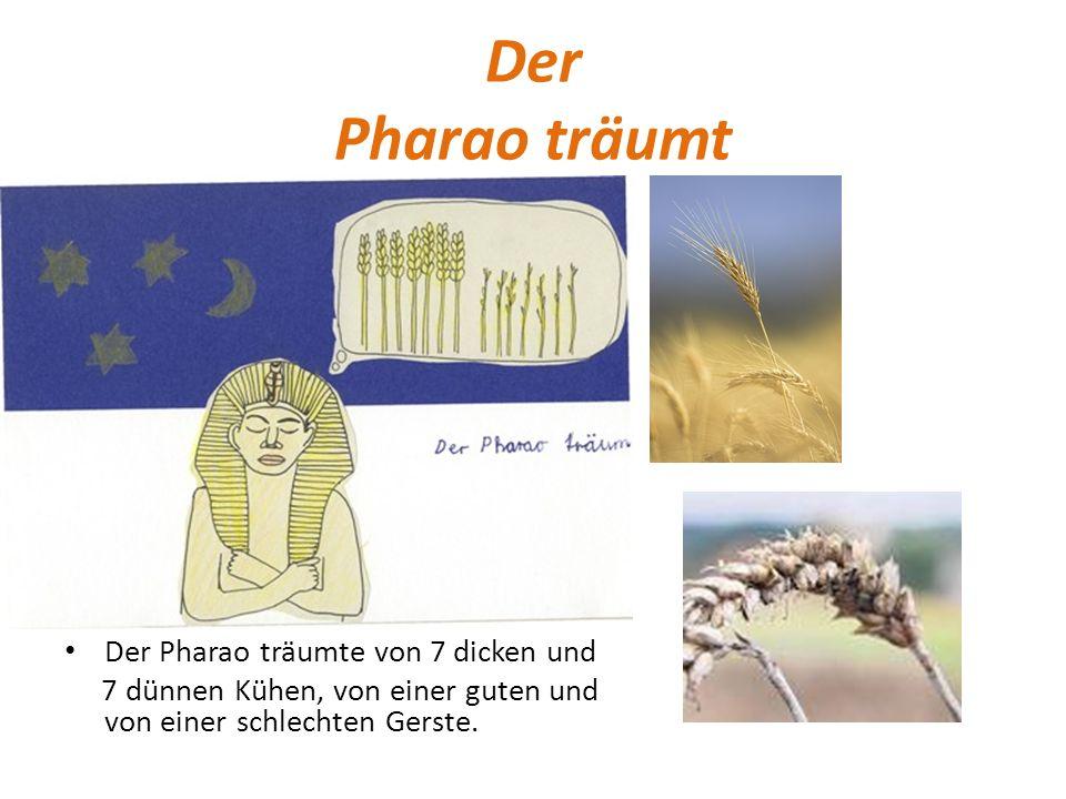 Der Pharao träumt Der Pharao träumte von 7 dicken und 7 dünnen Kühen, von einer guten und von einer schlechten Gerste.