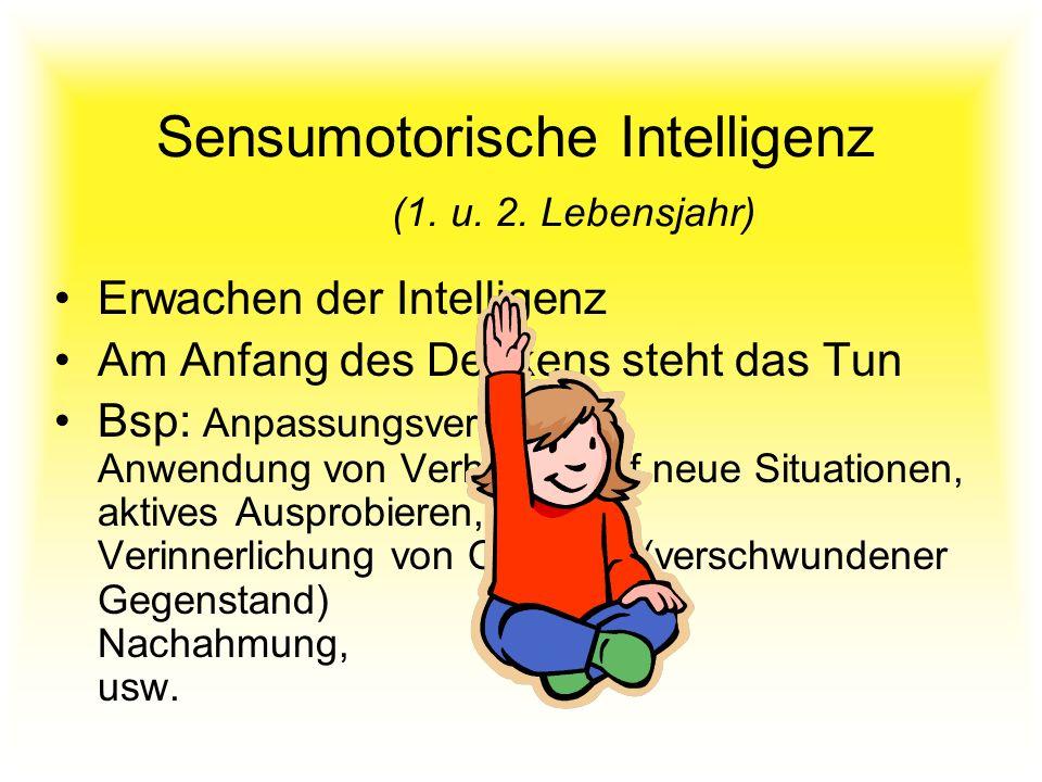 Sensumotorische Intelligenz (1. u. 2. Lebensjahr) Erwachen der Intelligenz Am Anfang des Denkens steht das Tun Bsp: Anpassungsverhalten, Anwendung von