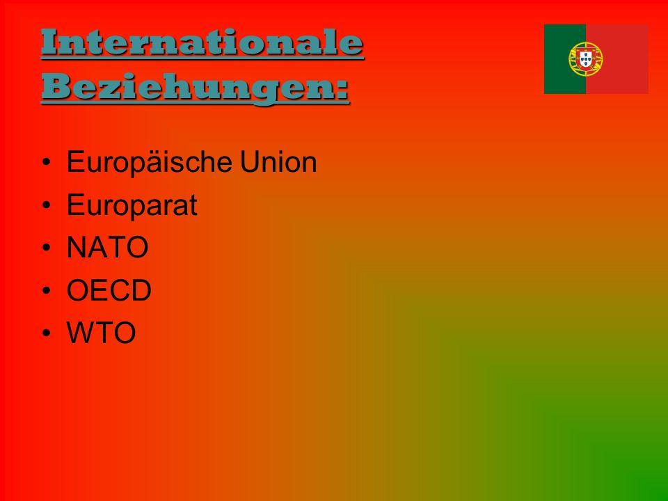 Internationale Beziehungen: Europäische Union Europarat NATO OECD WTO