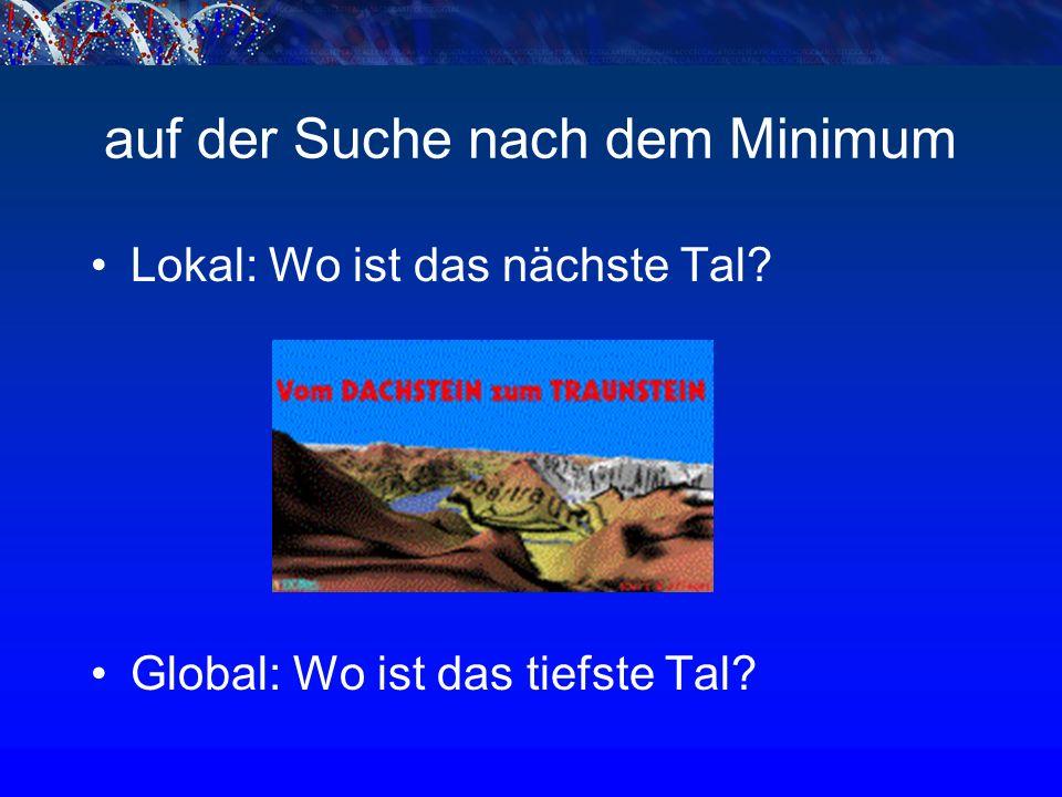 auf der Suche nach dem Minimum Lokal: Wo ist das nächste Tal Global: Wo ist das tiefste Tal