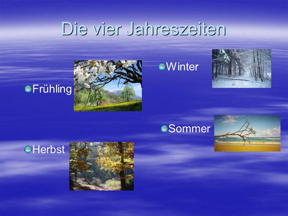 Die vier Jahreszeiten Frühling Herbst Winter Sommer