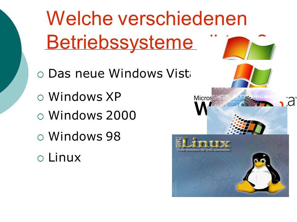Anteile der verschiedenen Betriebssystem  Restlichen 4% haben Betriebssysteme wie Windows 98, Linux, und andere  Windows Vista 24%  Windows 2000 16%  Windows XP 56%