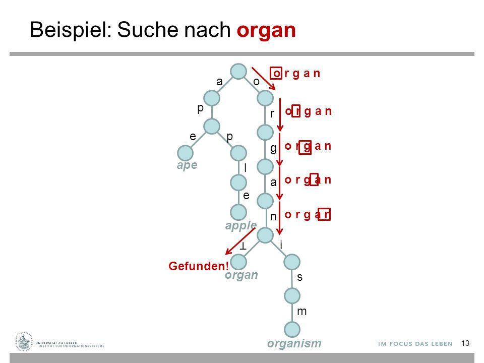 Beispiel: Suche nach organ ao p r g a n i s m ep l e ape apple organ organism o r g a n Gefunden! 13