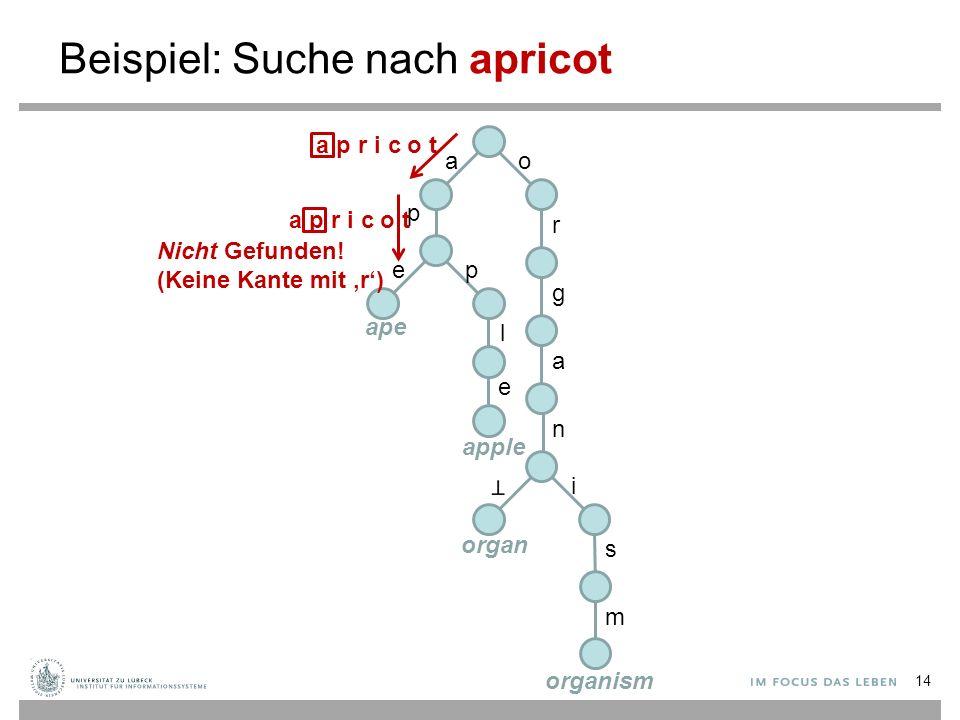 Beispiel: Suche nach apricot ao p r g a n i s m ep l e ape apple organ organism a p r i c o t Nicht Gefunden! (Keine Kante mit 'r') 14