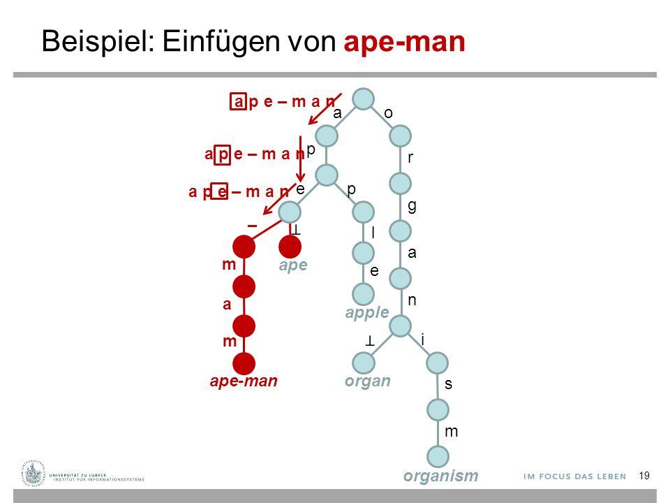 Beispiel: Einfügen von ape-man ao p r g a n i s m ep l e ape apple organ organism a p e – m a n – m a m ape-man 19
