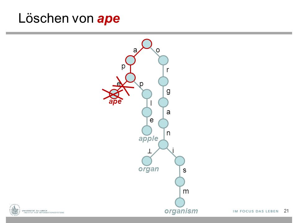 Löschen von ape ao p r g a n i s m ep l e ape apple organ organism 21