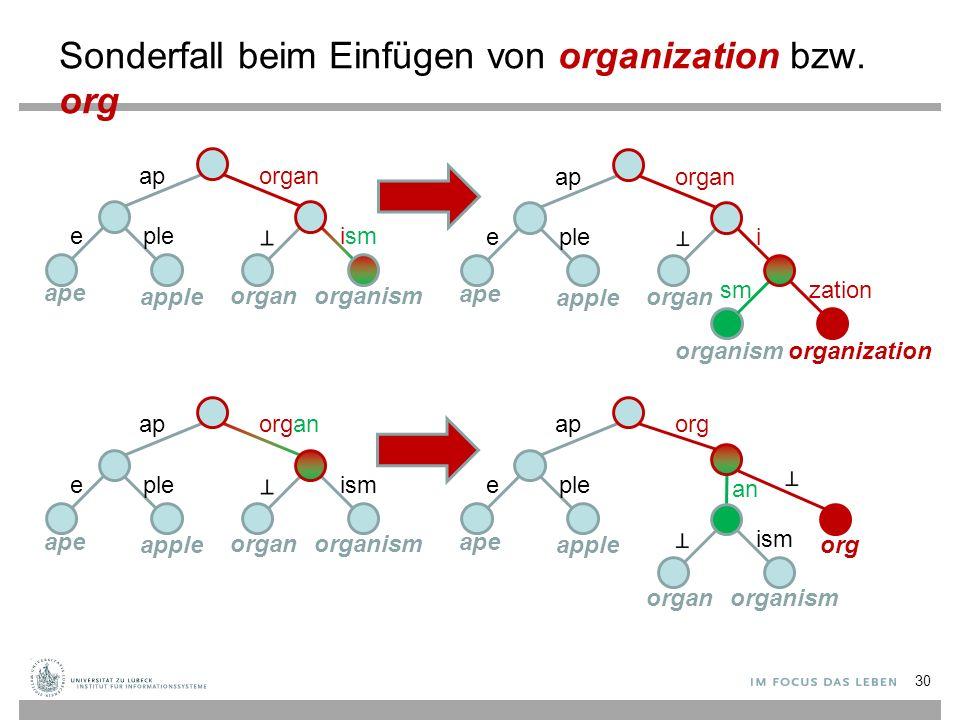 Sonderfall beim Einfügen von organization bzw. org aporgan ismeple ape apple organorganism aporgan ieple ape apple organ organismorganization smzation