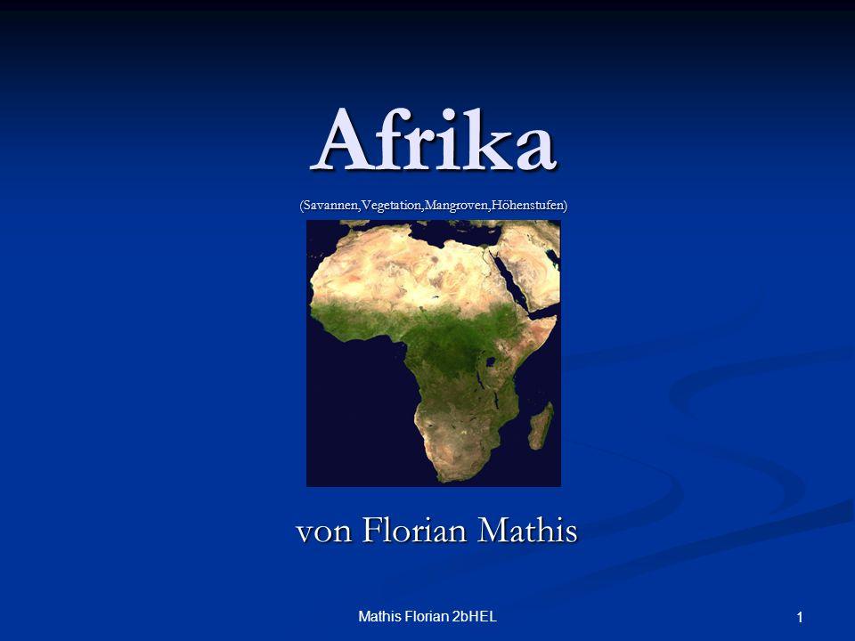 Mathis Florian 2bHEL 1 Afrika (Savannen,Vegetation,Mangroven,Höhenstufen) von Florian Mathis