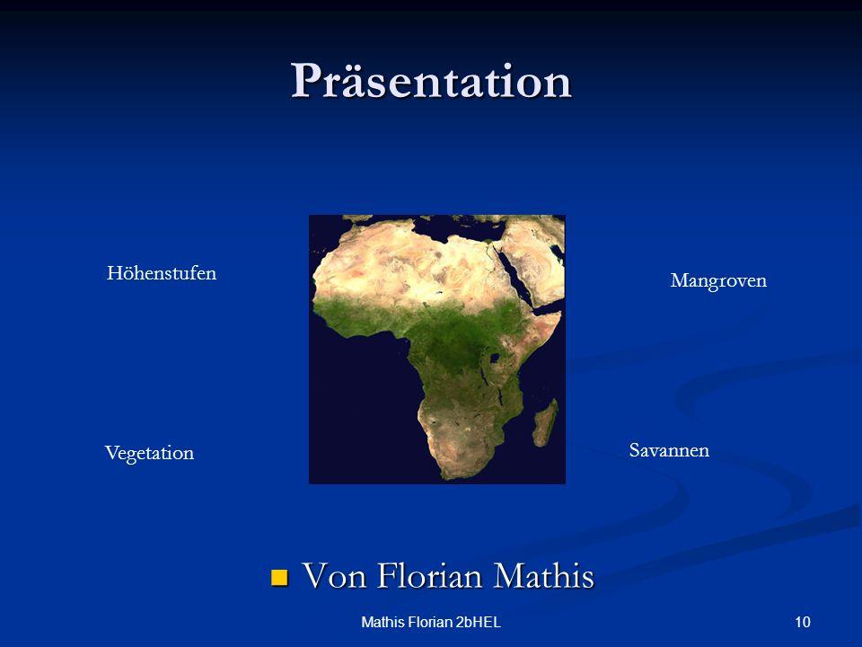 10Mathis Florian 2bHEL Präsentation Von Florian Mathis Von Florian Mathis Höhenstufen Vegetation Mangroven Savannen