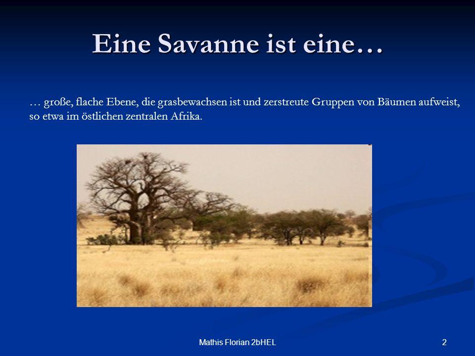 2 Eine Savanne ist eine… … große, flache Ebene, die grasbewachsen ist und zerstreute Gruppen von Bäumen aufweist, so etwa im östlichen zentralen Afrik