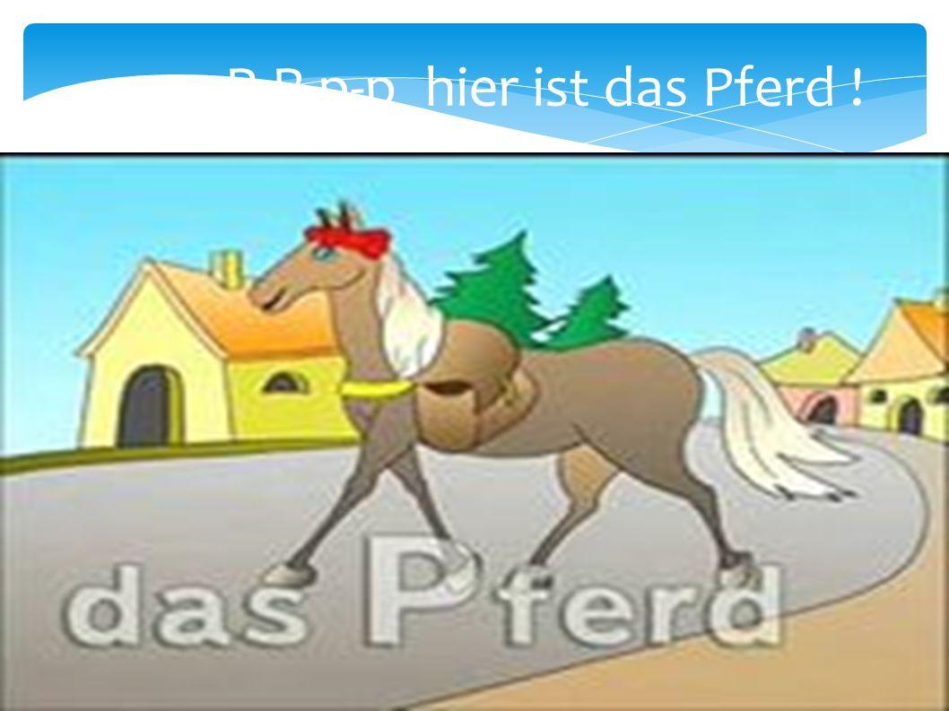 P-P-p-p hier ist das Pferd !