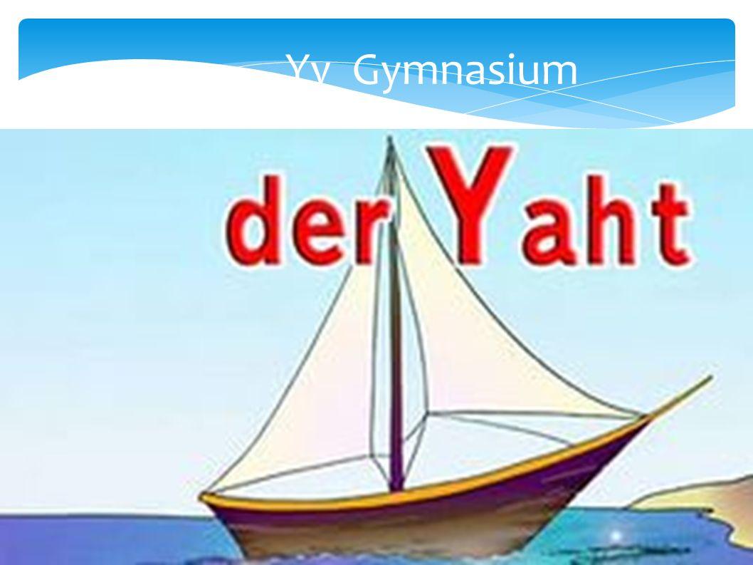 Yy Gymnasium