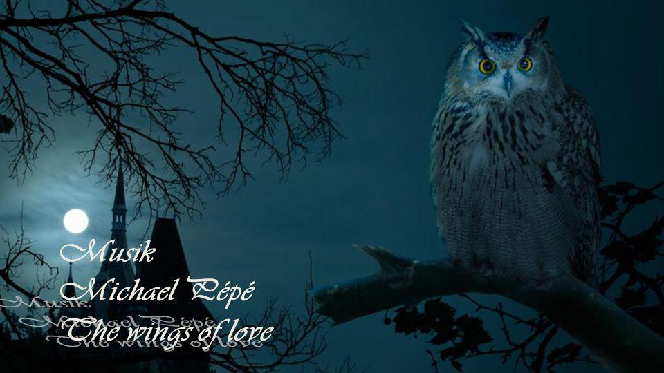 Der Abend ist die Seele des Tages, die Nacht des Tages Gewissen. Paul Richter