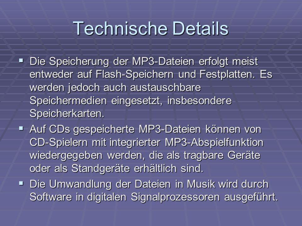 Technische Details  Die Speicherung der MP3-Dateien erfolgt meist entweder auf Flash-Speichern und Festplatten.