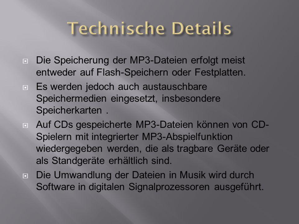  Die Speicherung der MP3-Dateien erfolgt meist entweder auf Flash-Speichern oder Festplatten.