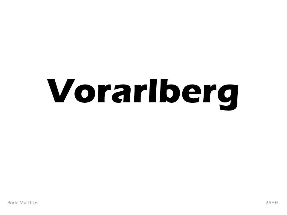 Vorarlberg Boric Matthias2AHEL